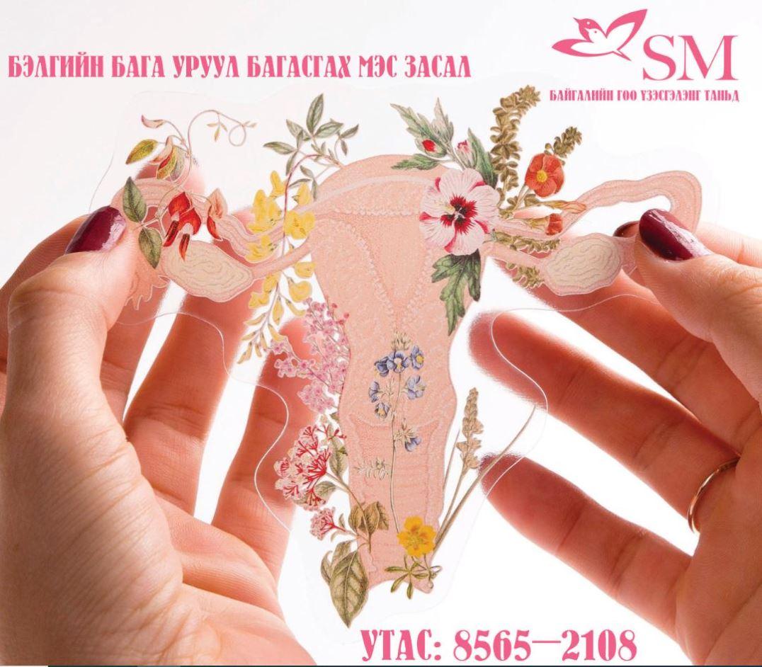 SM ЗӨВЛӨЖ БАЙНА | Эмэгтэйчүүдийн пластик мэс засал