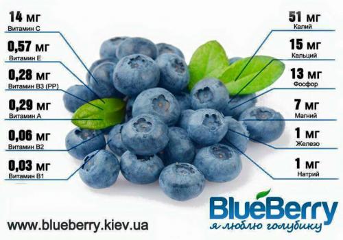 Нэрс жимс тархинд хамгийн сайн тэжээл болдог