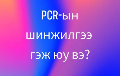 PCR-ЫН ШИНЖИЛГЭЭ ГЭЖ ЮУ ВЭ?